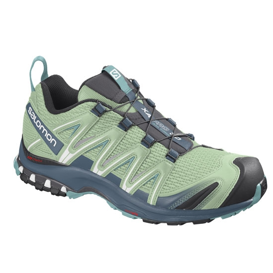 Salomon XA PRO 3D W - Spruce Stone/Indian Tea