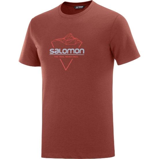 Salomon Blend Logo Tee - Madder/Goji Berry