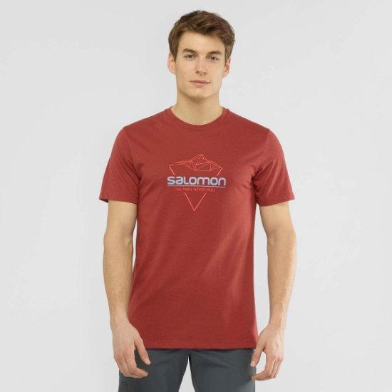 Salomon Blend Logo Tee - Photo of detail