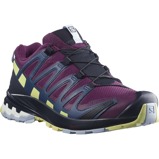 Salomon XA Pro 3D v8 GTX - Plum Caspia Night