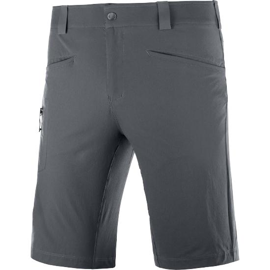 Salomon Wayfarer Shorts - Ebony