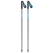 Salomon POLES SENSE Black