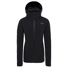 The North Face Insulated Apex Flex GTX 2.0 Jacket W