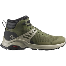 Salomon X Raise Mid GTX