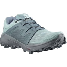 Salomon Wildcross Gtx W