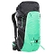 The North Face Forecaster 35 -  Chlorophyll Green/Weathered Black