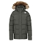 The North Face Gotham Jacket W - New Taupe Green